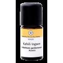 WADI Эфирное масло имбиря кахили (гедихиумы) 5 мл